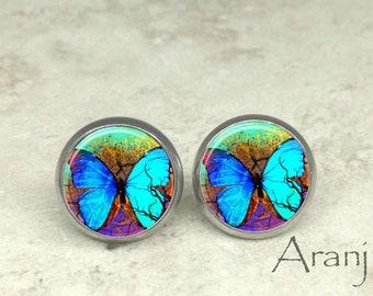Blue butterfly earrings, butterfly earrings, butterfly jewelry, butterfly stud earrings AN220E