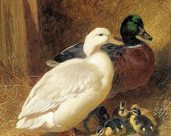 Ducks and Ducklings - Counted cross stitch pattern in PDF format