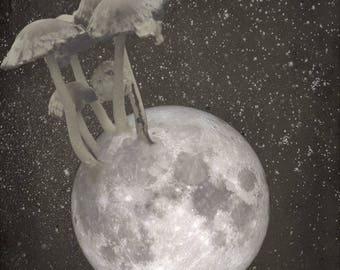 Moon Mushroom Digital Art Download