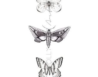Wings Illustrative Print