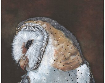 Barn Owl Painting - print of owl painting BO4115 - A4 size wall art print - bird art print - watercolor print - owl decor