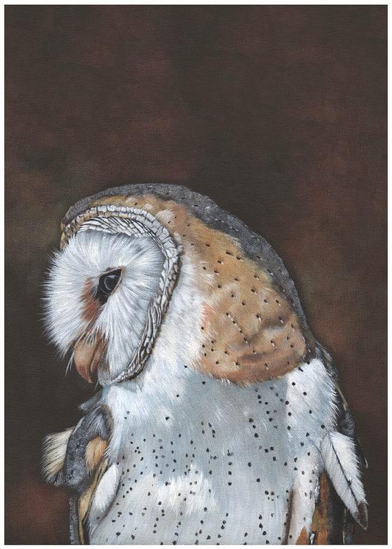 Barn Owl Painting - print of owl painting BO4115 - A4 size wall art print - bird art print - watercolor print - owl decor