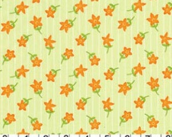 Lush - Vintage Dainties in Creamcicle by Patty Young for Michael Miller Fabrics