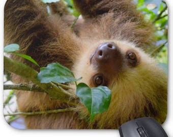 Animal Photo Mousepad - Hi There Sloth - Mouse Pad