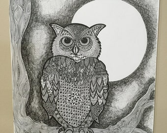 Owl at night.