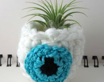 Aqua Eyeball Air Plant Pot