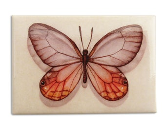 Clear Winged Butterfly Magnet