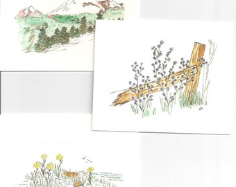Box of 12 4x5 blank note cards of mixed designs