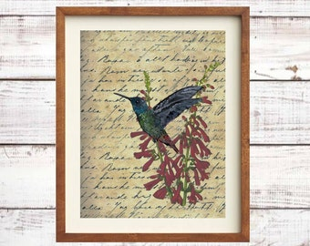 Hummingbird and Botanical Instant Download Digital Printable Wall Art Farmhouse Shabby Chic Collage Decor JPG PDF