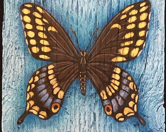 Black Swallowtail Painting on Weathered Plywood