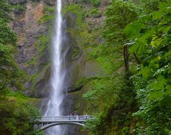 Columbia River Gorge Photogaphy,Fine Art Photography,Water Falls Art,Multnomah Falls,Giclee Print,Bridge Art,Tall Prints, Tall Photos,