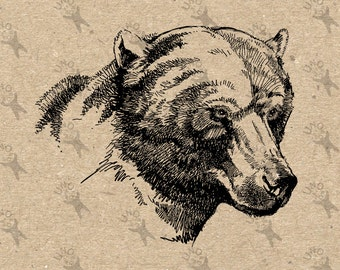 Vintage image Grizzly Bear Instant Download Digital printable picture clipart graphic transfer scrapbooking burlap kraft decor HQ 300dpi