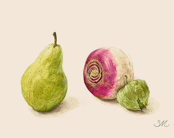 Pear Turnip Tomatillo Still Life | Kitchen Art | Small Art