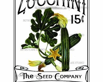 Vintage Illustration Zucchini Seed Packet Digital Download Vegetable Transfer Clip Art