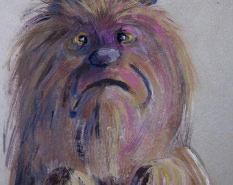 Portrait of Minnie, dog in a bad mood