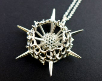 Spumellaria Plankton Pendant, large - Radiolarian - Marine Biology Gift - Science Jewelry - Ernst Haeckel Art - Metal 3D Printing