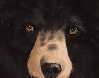 """Black Bear Pastel Painting, Matted and Framed  11"""" x 14"""""""