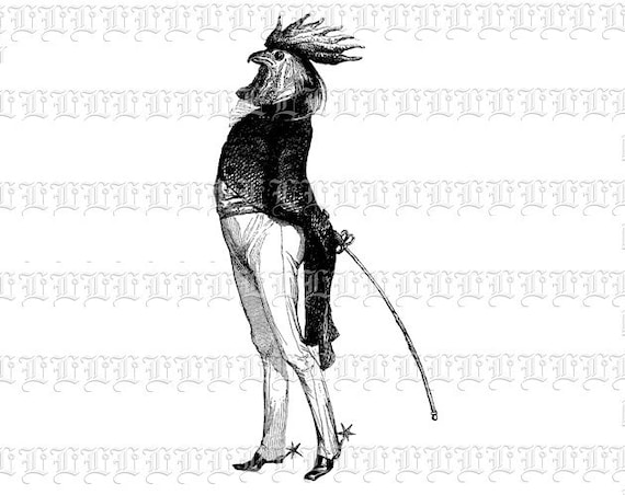 Line Art Rooster : Digital victorian graphics humour surreal rooster man clip