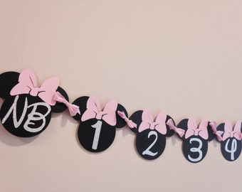 Minnie Mouse 12 Month Banner, Minnie Mouse Banner, Minnie Mouse First Birthday Banner
