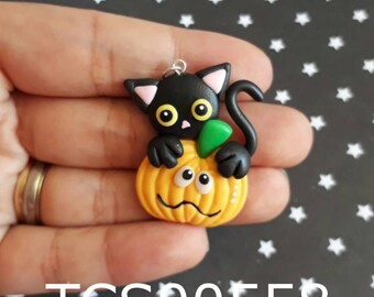 Cat on pumpkin TCS00558