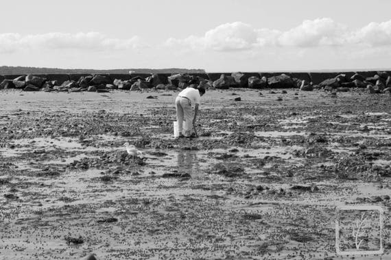 """Digging Clams,"" Crab Meadow, Northport, New York, 2017."