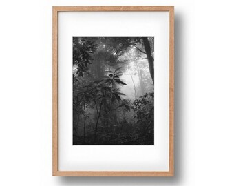 forest print foggy forest photography wall art wilderness print forest poster nature print printable art wilderness decor instand download