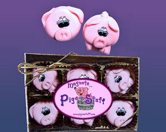 Pig Magnets ...Gift Box of 12