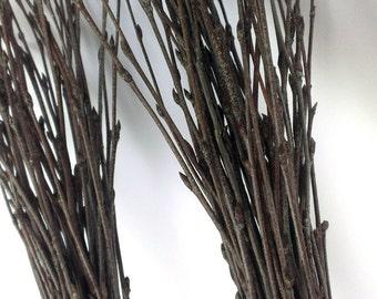 100 pc.Twigs, 2 Bundles of Birch Twigs, Birch Bark Wedding Decor, Birch Branches, Rustic Weddings, Decorative Birch, Rustic  Decor