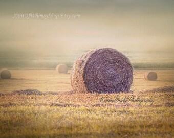 Morning Mist, Hay Field, New England Farm, Photography Print, Round Hay bales, Golden Hour Art, Home Decor, Wall Art, Pastoral Scene, Serene