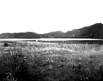 Blue Ridge Mountains, Virginia, Panoramic Art, Mountain Photography, Lake Photography, Large Wall Art, Holga Photography, Essence
