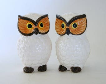 Vintage Owl Decor, Salt Pepper Shakers, Owl Kitchen Decor, Lego Ceramics,  1970s Ideas
