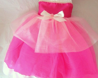 Aurora Costume, Sleeping Beauty: Hot Pink Light Pink and White lined, glitter and sparkle, princess birthday party, princess dinner, trip