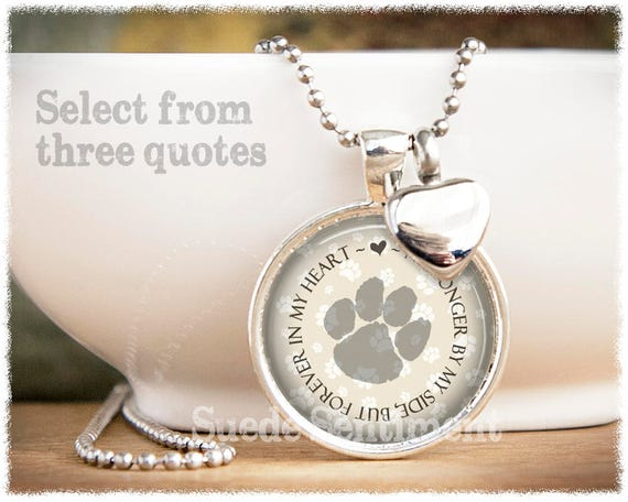 Pet cremation jewelry pet loss urn necklace pet urn like this item aloadofball Choice Image