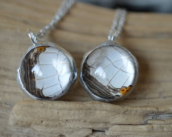 Small Real Butterfly Wing Sphere Pendant