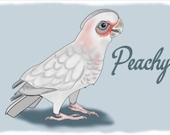 In Memory of Peachy- Digital files