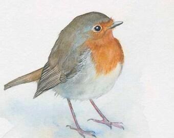 English Robin Print 5x7 of watercolor painting