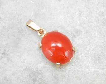 Simple Coral Pendant with Bold Color 7XTYTY-N