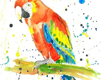Parrot (Scarlet Macaw) - Watercolor Painting Print