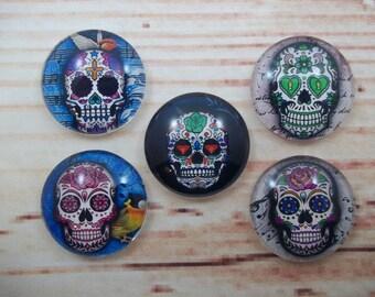 Sugar Skull Magnets, Day of the Dead Fridge Magnets, Set of 5, Kitchen Decor, Hostess Gift, Housewarming Gift, Office Decor, Locker Magnet