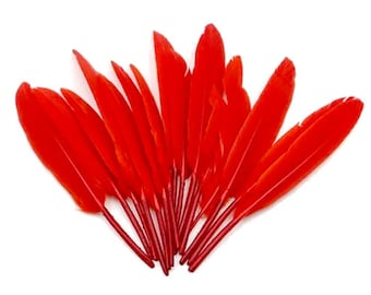 Red tinted Indian feathers