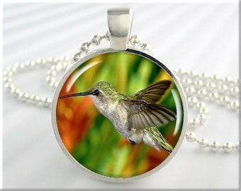 Hummingbird Photo Pendant, Bird Jewelry, Resin Charm, Bird In Flight, Round Silver, Bird Lover Gift, Bird Watcher Gift (057RS)
