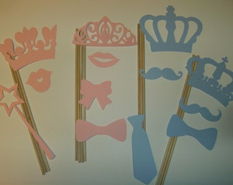 Gender Reveal Photo Booth Prop Set 13 piece (2041D)