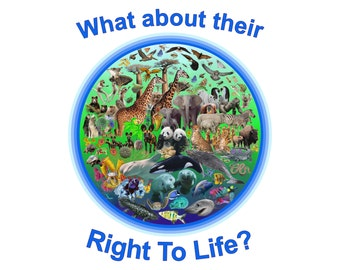 Right To Life - Download