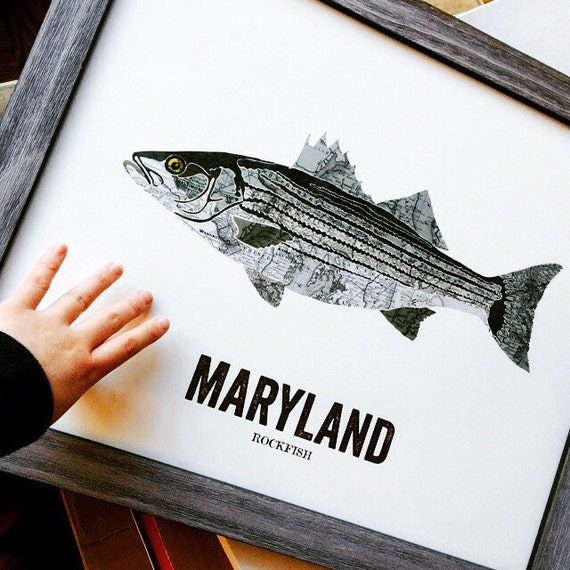 Maryland state fish map art nature outdoor art vintage map for Maryland state fish
