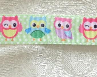 Large pastel green grain and OWL Ribbon has polka dots