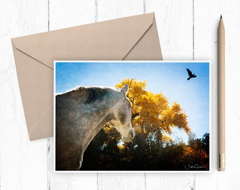 Chama and the Raven fine art note card (set of 4)