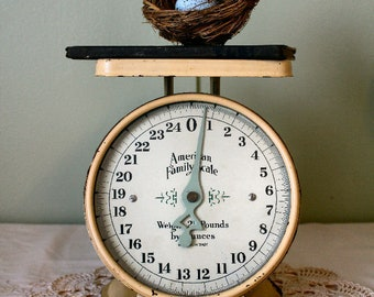 Antique Scale American Family Scale with glass dial