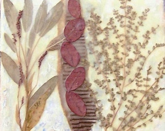 Dried flowers, nature collage, small painting, beeswax collage, canvas collage, pressed flowers and leaves
