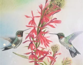 Hummingbirds - Ruby Throated