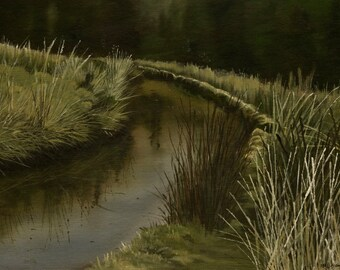 Along the Leat, Dartmoor - Limited Edition Print